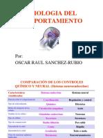 FISIOLOGIA DEL COMPORTAMIENTO.pptx