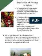 Respiracion en Frutas y Hortalizas Poscosecha Ppt