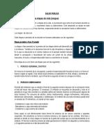 TAREA DE SALUD PUBLICA.docx