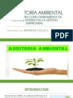 LA AUDITORÍA AMBIENTAL.pptx