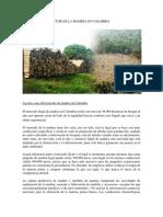 SECTOR DE LA MADERA EN COLOMBIA TERCEA ENTREGA DESARROLLO SOSTENIBLE.docx