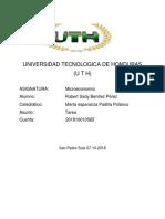 Tarea microeconomia.pdf