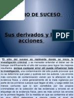 315521591-Resumen-Sitio-de-Suceso.pdf