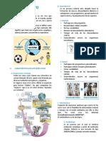 SER VIVO Y NIVELES DE ORGANIZACIÓN.docx