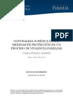 LA NATURALEZA JURIDICA DE LAS MEDIDAS DE PROTECCION.pdf