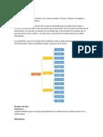 Clasificación De Industrias.docx