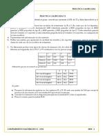 PRÁCTICA_T1_30%.docx