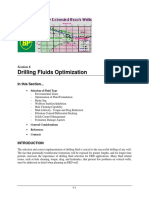6 - Drilling Fluids Optimization