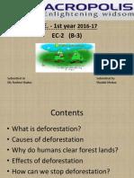 A Presentation on Deforestation