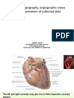 angiographic views and nomencluture.pdf