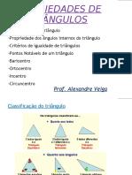 91489028-pontos-notaveis-triangulo.pdf