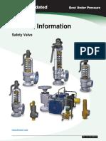 Safety valve general information.pdf