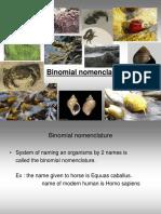 Binomial Classification.ppt