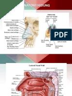 Rinoskopi anterior, posterior, laringoskop indirect.pptx