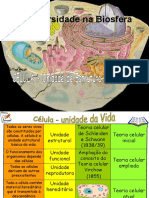A Célula - estrutura e função.pdf
