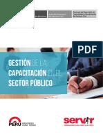 MC8-GP.pdf