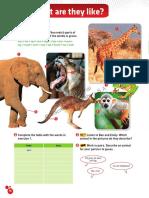 Phases 1.pdf