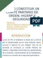 Comite paritario (1)