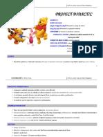 0_proiect_didactic_grad_i_mem.docx