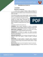 02 INGENIERIA DEL PROYECTO.docx