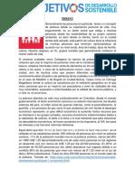 ENSAYO SENTIDO DESARROLLO OSTENOBLE.docx