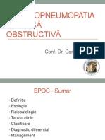 curs BPOC 2019.ppt