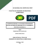 Garcia Vargas.pdf