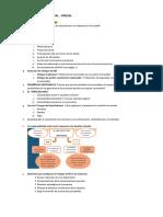 Responsabilidad Social Empresarial - Resumen Parcial