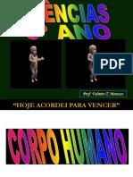 7.Corpo Humano