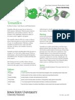 Tomatillo.pdf