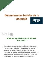 1.DETERMINANTES SOCIALES Y OBESIDAD.pdf