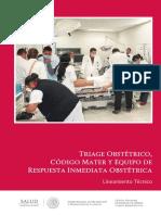 web_TriageObstetricoCM (1).pdf