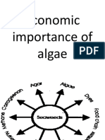 Economic Importance of Algae