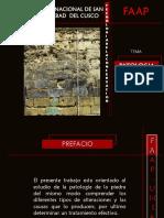 Patologia de La Piedra-exposicion