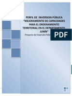 perfil de inversion publica