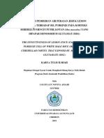 proposal I Gusti Ayu Novita (115170026).docx