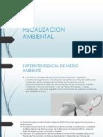 FISCALIZACION AMBIENTAL