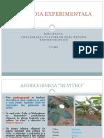 C3-14.03.2019-Haploidia experimentala.pdf