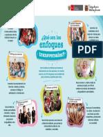 Afiche Enfoques Transversales