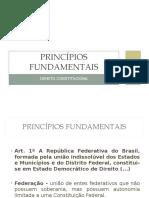 01_Princípios Fundamentais_Cristiana Costa.ppt