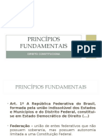 01_Princípios Fundamentais_Cristiana Costa.ppt