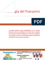 Fisiología del Puerperio (2).pptx