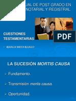 Cuestiones Testamentarias Rosalia Mejia 25-01-12