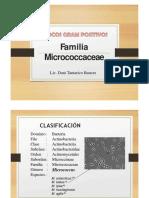 1 FAMILIA MICROCOCCACEAE.pptx
