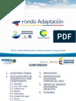 RESULTADOS_FASE_DIAGNOSTICO_RIO_NEGRO.pdf