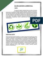 SISTEMAS DE GESTION AMBIENTAL - INFORME.docx