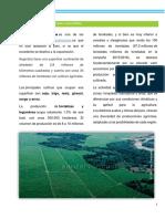 1) Panorama de la agricultura argentina.docx