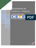 TRATAMENTO DE MINERIOS PRATICAS LABORATORIAIS.pdf