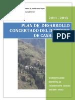 PDC Cashapampa.pdf