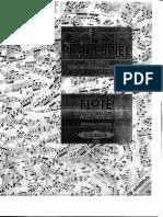 Probespiel Flute excerpts